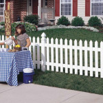 vinyl fencing michigan